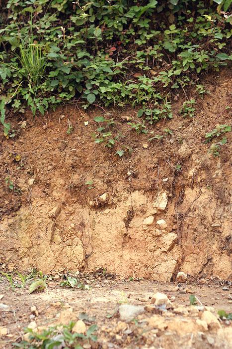 Fix Clay Soil