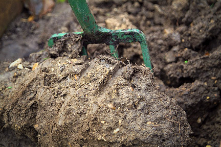 Getting the Most out of Your Hard Clay Soil