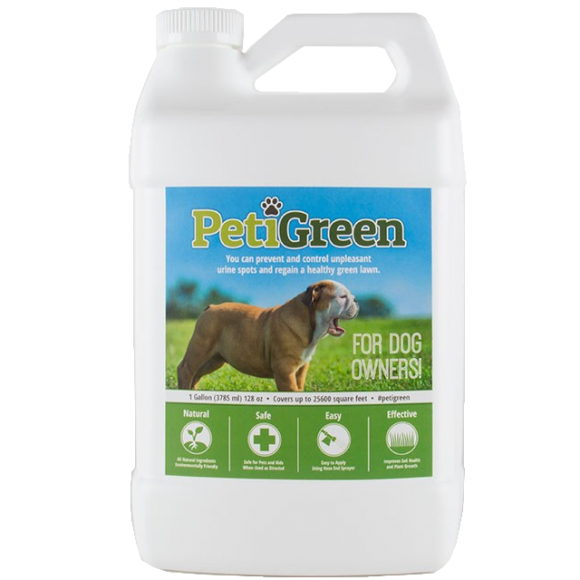 Dog urine stains on grass cheap remove pet urine easily for How to fix dog urine spots on lawn
