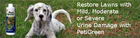 Restore Your Lawn with PetiGreen